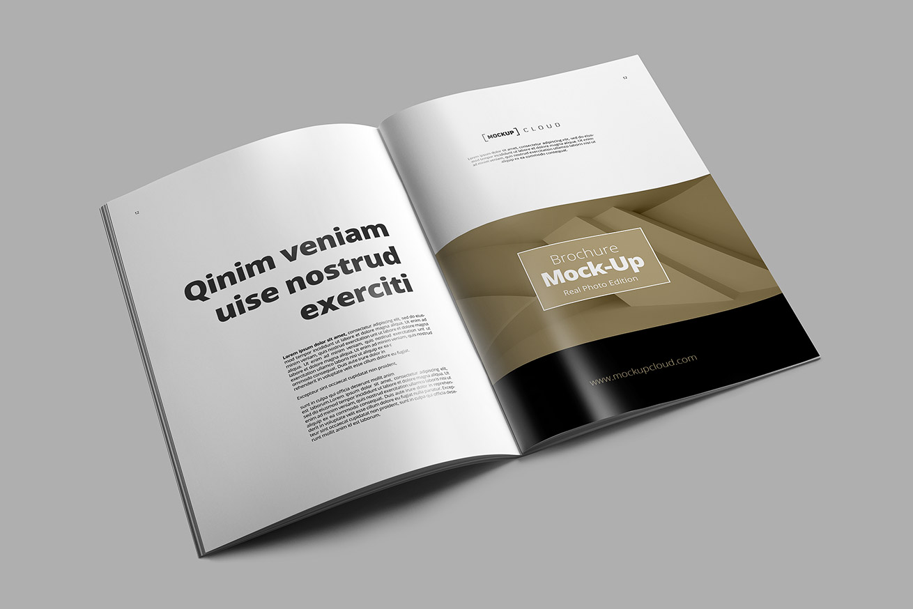 PUBLISHING & PRINT